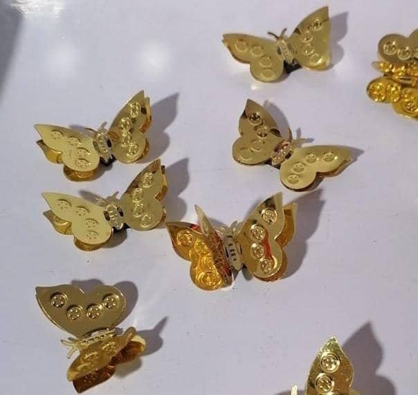 پروانه مگنتی